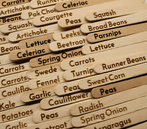 Laser engraved vegetable / allotment labels (for seeds) 29 Labels