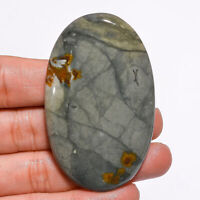 Natural Polychrome Jasper Oval Shape Cabochon Loose Gemstone 145.5 Ct 63X38X7 mm