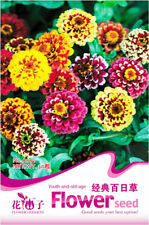 Original Package 50 Youth-And-Old-Age Seeds Classic Zinnia Elegans Seed A091