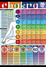 Giant YOGA CHAKRAS OF THE HUMAN BODY Multilingual Wall Chart Poster