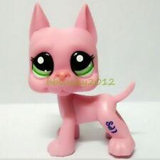 Littlest Pet Shop RARE Pink Great Dane Dog Puppy Toy Figure Green Eyes LPS CN