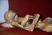 608042 Museum Of The Mummies Guanajuato Mexico A4 Photo Print