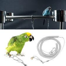 6m Pet Parrots Rope Flying Leash Anti Bite Bird Outdoor Training Bird Supplies