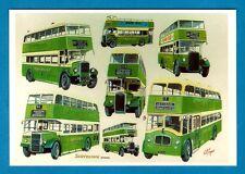 Postcard ~ Southdown Buses - Leyland Titans: Guy Arab - GS Cooper - Mayfair JB4