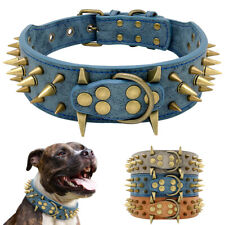 5cm Wide Brass Spiked Studded Leather Pet Dog Collars Pitbull Bulldog Rottweiler