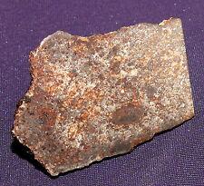 Sehr schöner Stein-Meteorit NWA 869, Heilstein, 49x37x25mm 58,4g