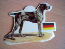 BRAQUE 70´S SPANISH PROMOTIONAL CARD DOGS PANRICO UNSTICKED VINTAGE ORIGINAL