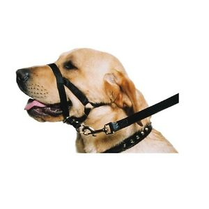 Ancol Dog Training Halter Nylon Head Harness No Pull Halti Trainer - SML MED LGE