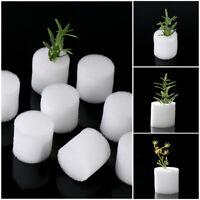 Supplies Aquarium Soilless Hydroponic  Seed Trays Flower Pots Nursery Sponge