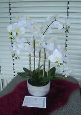 Lumida Flora leuchtende Orchidee in weiß + im Glitzertopf +Timer ca 85 cm Höhe