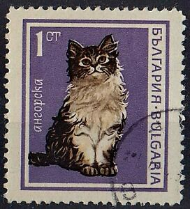 BULGARIA 1967 Animals Angora CAT 1 st STAMPS