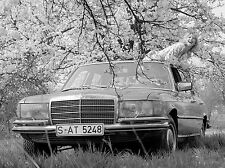 1973 Mercedes 450 SEL European Press photo 8 x 10 Photograph