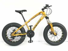 PedalEase Big Cat Fat Bike MTB Snow Beach front suspension disc brake 21 speed