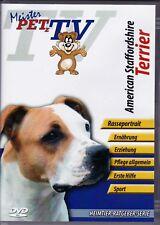 American Staffordshire Terrier - Meister PETz TV *DVD*NEU* Ratgeber - Hund