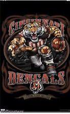 """Cincinnati Bengals 22"""" X 34"""" Poster, New In Wrap, COSTACOS, 2010"""