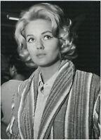 Beba Loncar, Original Presse-Photo von 1964
