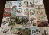 Nice ~Lot of 25 Antique Greetings Postcards with *BIRDS~Bird-in sleeves--a636