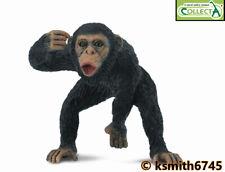 nouveau CollectA SAOLA solide Jouet en plastique Wild Zoo animale africaine ANTILOPE