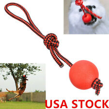 Indestructible Dog Ball on a Rope Pet Puppy Tug Ball Toys Pet Chewing Toys #US