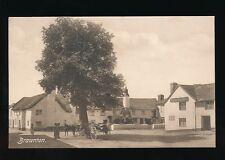 Devon BRAUNTON Village Red Lion Inn pre1919  PPC by Frith