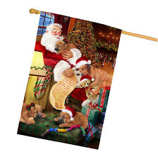 Rhodesian Ridgeback Dog and Puppies Sleeping with Santa House Flag