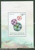 MICRONESIA  2015  URCHINS SOUVENIR  SHEET  MINT NH