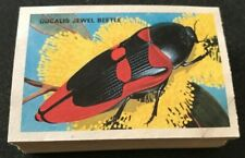 Shell Trading Cards AUSTRALIAN BEETLES Complete Set Of 60