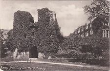 The Castle Gateway, BERRY POMEROY, Devon