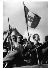 WW2 - Photo-carte 15x21 - Italie, Sicile, Palerme - Des Partisans italiens