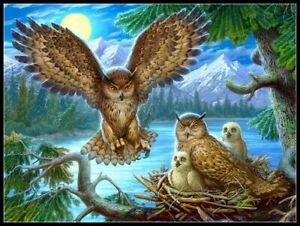 Owl Family 2 - Chart Counted Cross Stitch Patterns Needlework DIY DMC Color