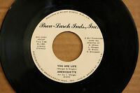 AMERIQUETTE *You Are Life* TELL ME N.O. Soul / Christmas 45 BROU-LARCH 001 RARE