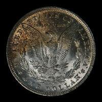 1885-O Morgan Silver Dollar - Original Deep Textured Burgundy Toning - Lot#Z569