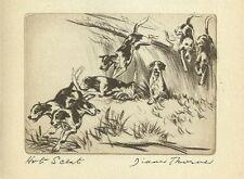 Foxhound - Vintage Dog Print - 1936 Diana Thorne