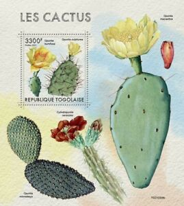 Togo 2021 MNH Plants Stamps Cactus Opuntia Cacti Nature 1v S/S