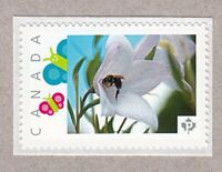 BEE on GIANT BELL FLOWER = Picture Postage MNH stamp Canada 2016 [p16/02sn13]