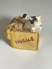 Peter Fagan Cat Fragile box