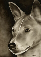 Basenji Dog Watercolor Art Print Signed by Artist Djr