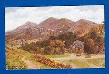POSTCARD - The Malvern Hills from the British Camp 1336-A R Quinton-pub J Salmon