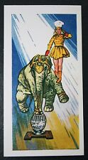Circus Elephant  Balancing Act   Large Illustrated Card     VGC / EXC
