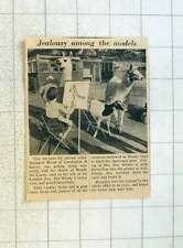 1955 Animal Artist Margaret Wood Of Carshalton Trouble With Jealous Llamas