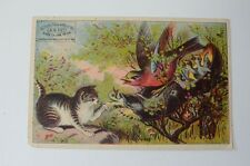 Antique West Brothers Children Shoes Advertising Card Colorado Springs Cat Birds