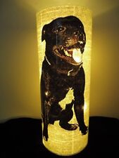 Staffordshire Bull Terrier Lantern No.141, black staffy dog gifts, mood lighting
