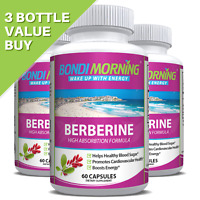 Berberine Supplement For Blood Sugar & Cardiovascular Support, 60 Vegan Caps