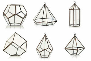 Glass & Brass Terrarium Plant Vase Stylish Designs Lantern Pentagon Diamond