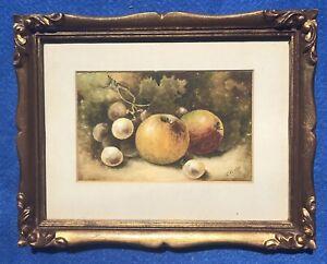 Original Watercolour Painting Still Life Fruit Apples Grapes Christopher Hughes