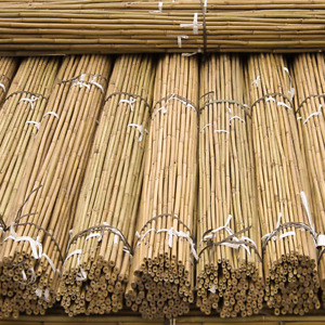 Strong Heavy Duty Thick Bamboo Plant Support Garden Canes 2ft-3ft-4ft-5ft,6Ft