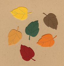 Mini Birch Leaf #3 Die Cuts - AccuCut