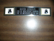 DAVID LEMIEUX (BOXING) NAMEPLATE FOR SIGNED GLOVES/TRUNKS/PHOTO DISPLAY