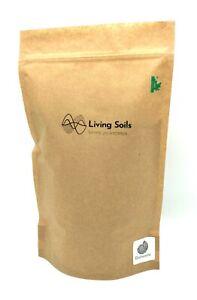 Living Soils - Diatomite (1000ml) - Diatomaceous earth