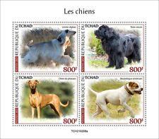 Chad 2021 MNH Dogs Stamps Pharaoh Afghan Hound Newfoundland Dog 4v M/S